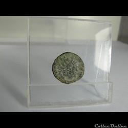 Woms coins