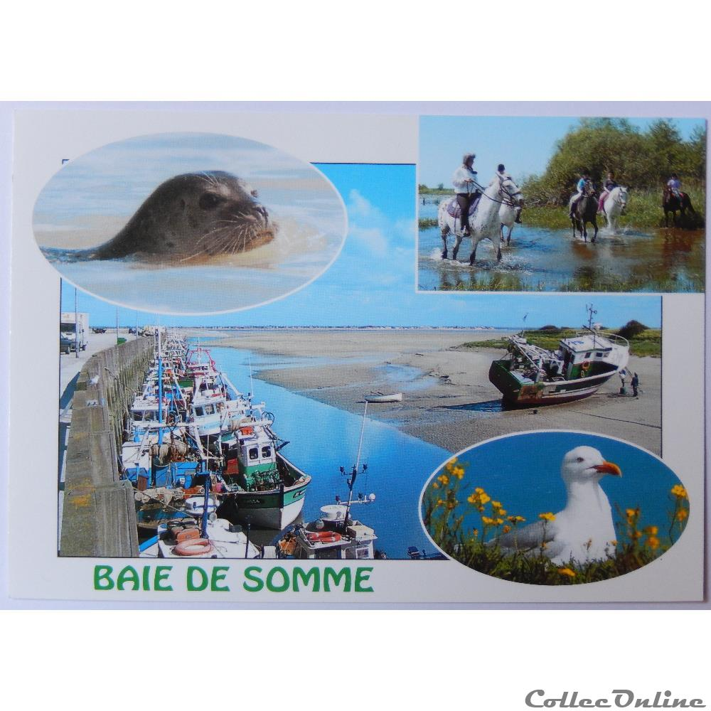 CP de la Somme, la baie de Somme : Cartes Postales, France, Picardie...