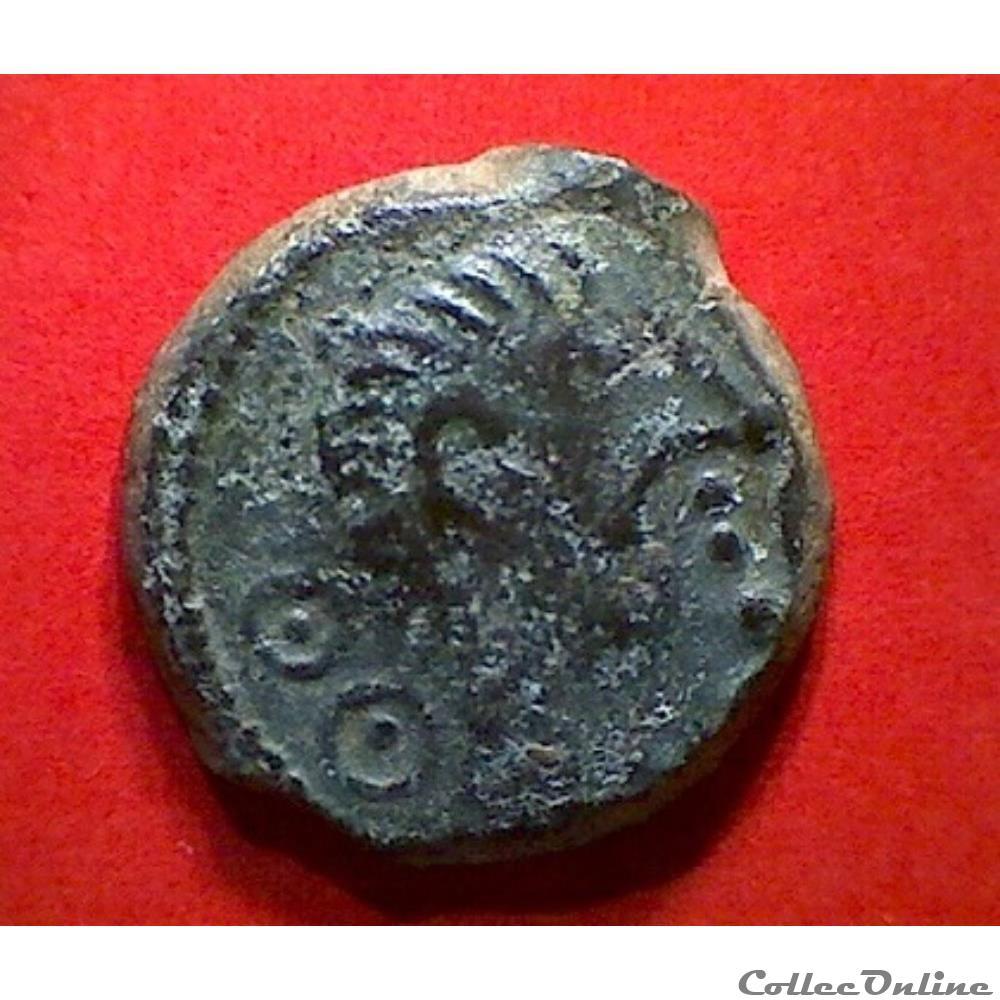 monnaie antique gauloise serie 55 dt 507 bronze viiricivs