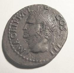 Agrippa, AE As