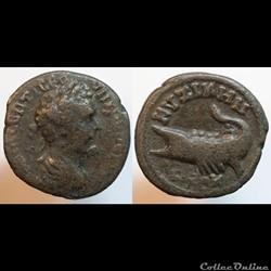 Bronze colonial de Septime Sévère