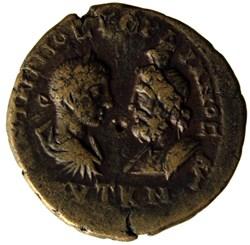 Pentassarie Hydre ou serpent (Agathodemo...