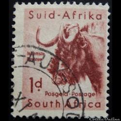 Afrique du Sud 00202 Gnou 1d de 1954
