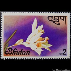 Bhoutan 00509 orchidé Thunia alba 2ch 19...