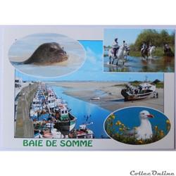 CP de la Somme, la baie de Somme