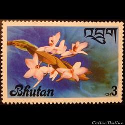 Bhoutan 00510 orchidé Dendrobium parishi...