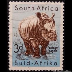 Afrique du Sud 00205 Rhinocéros blanc 3d...