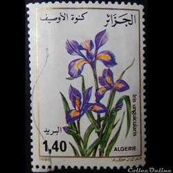 Algérie 00883 Iris d'Alger 1.40d de 1986