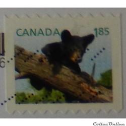 Canada 02806 Ours noir 1.85$ de 2013