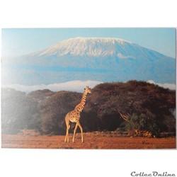 CP de Tanzanie, le Kilimanjaro