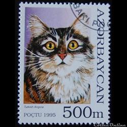 Azerbaïdjan 00239 chat domestique 500m d...