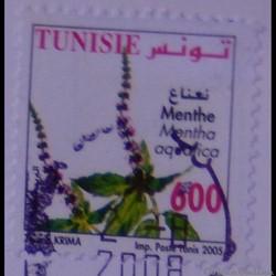 Tunisie 01556 Fleur de Menthe 600LSd de ...