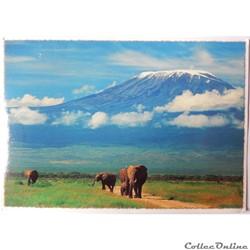 CP du Kenya, le Kilimanjaro
