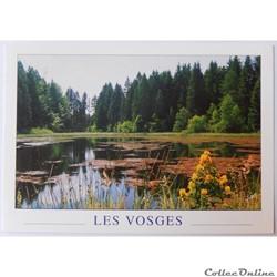 CP des Vosges, l'étang de Bachetey