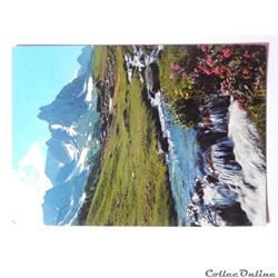 CPA des Hautes-Alpes, Cascatelle dans la...