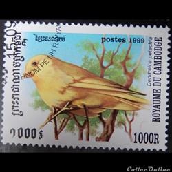 Cambodge 01664 oiseau Paruline jaune 100...