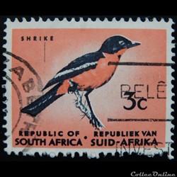 Afrique du Sud 00253 Gonolek rouge-noir ...