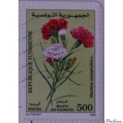 Tunisie 01368 Fleur Oeillets des fleuris...