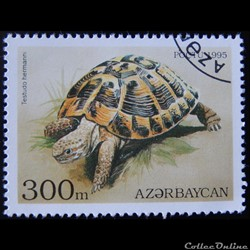 Azerbaïdjan 00219 Tortue d'Hermann 300m ...