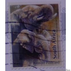 Afrique du Sud 02190 Eléphants Airmail P...