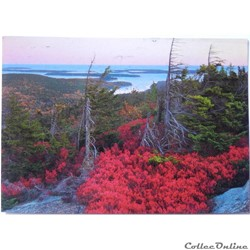 CP des Etats-Unis, Maine, Northeast Harb...
