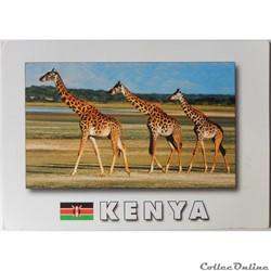 CP du Kenya