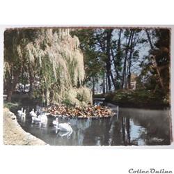 CPA des Vosges, Vittel, l'étang et les Cygnes