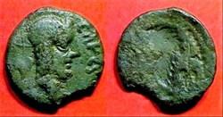 incus - bronze TASGIITIOS