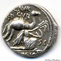 M. AEMILIUS SCAURUS & PUB. PLAUTIUS HYPSAEUS