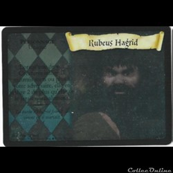 Harry Potter - Set de base - 018 - Rubeus Hagrid - Rare Holographique