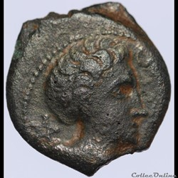 série 1220 DT 3594 Bronze  CICIIDV BRI I...