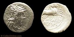 284/1a Calidia -116