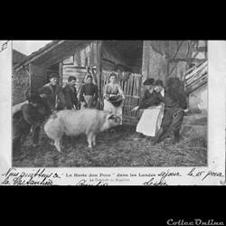 """Carte Postale (40) """"La Heste dou Porc"""" d..."""