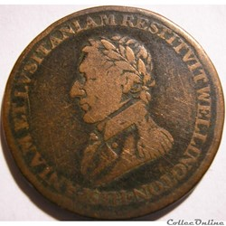 Wellington - HalfPenny 1812 Peninsular t...
