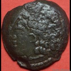 DT 687 bronze Lingon EKPITO