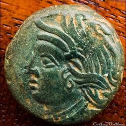 DT 2587 Bronze VANDIINOS