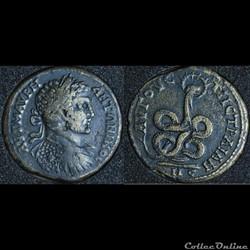 Hexassaria Augusta Traiana