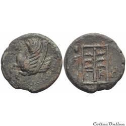 Skepsis - Troas Bronze au Pégasos
