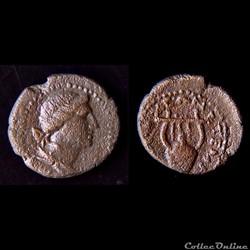 """""""Provinciale Romaine"""" Seleucie et Pierie, sous Hadrien (117 - 138 AD)"""