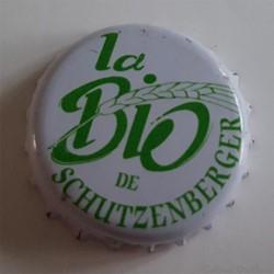 La Bio de Schutzenberger