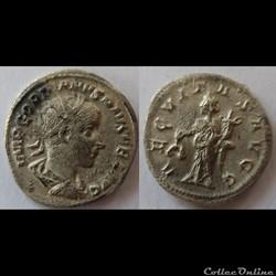 Gordien III - Antoninien - AEQVITAS AVGG