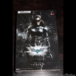 Catwoman The Dark Knight trilogy Play Ar...