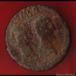 Auguste et Agrippa - As de Nimes