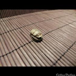 sceau , cachet Egypte scarabée à cartouc...