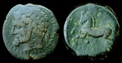 KINGS OF NUMIDIA, MICIPSA AE27