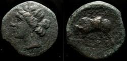 SICILY, SYRACUSE, HIERON II AE19