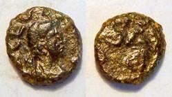 LEO I AE4 RIC 674, Lion