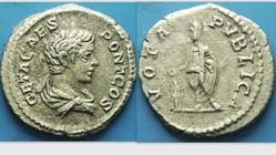 Geta AR Denarius, RIC IV 38b, VOTA PVBLI...