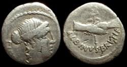 D. JUNIUS ALBINUS; GENS POSTUMIA AR Dena...