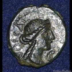 VOLQUES ARÉCOMIQUES (région de Nîmes) Bronze au Démos, VOLCAE AREC